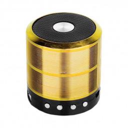 WS887 Mini Wireless Bluetooth Speaker with FM Function Built-in Li Battery - Gold
