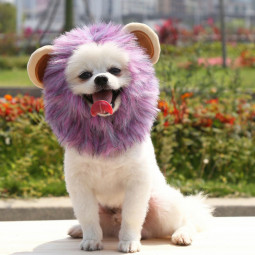 Pet Costume Purple Lion Mane Hood for Dog and Cat for Halloween - M