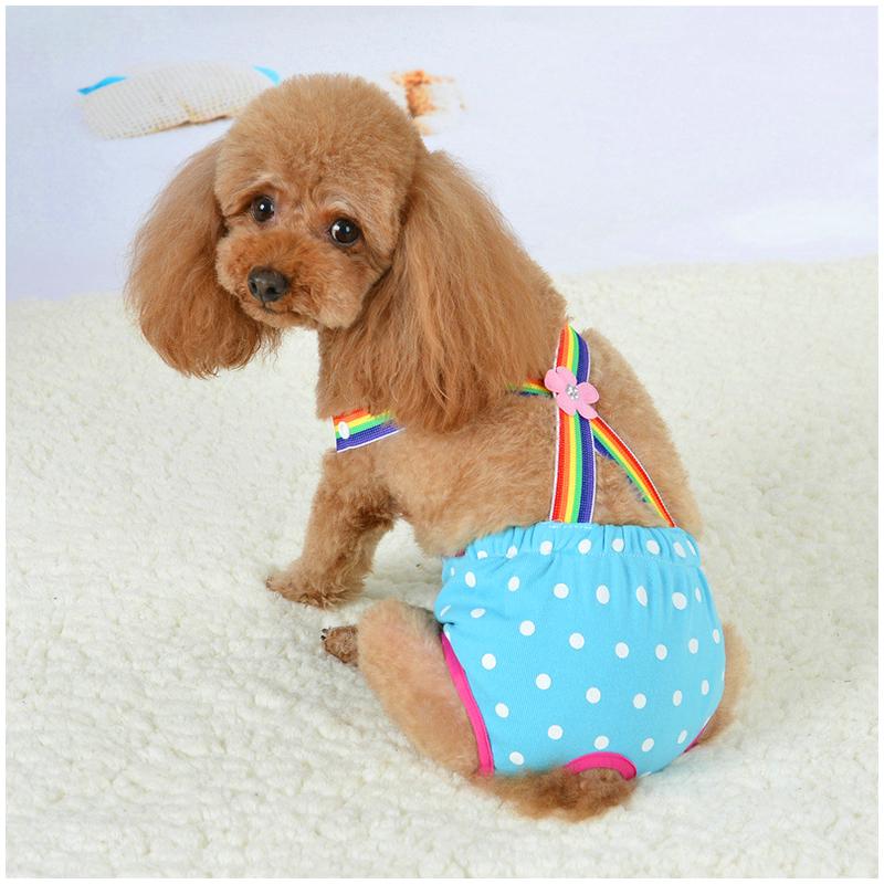 Size XL FemaXLe Pet Dog Cotton Sanitary PhysioXLogicaXL Pants Underwear Nappy Diapers - BXLue Point