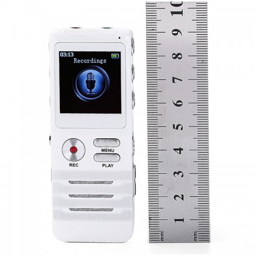 8GB Portable LCD Digital Audio Voice Recorder Dictaphone Recording Pen
