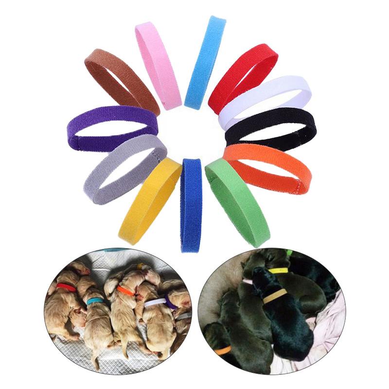 12Pcs/Pack Newborn Puppy Kitten ID Fleece Collar Bands Strap - Size L