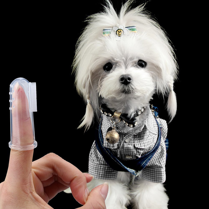Transparent Soft Silicone Pet Finger Toothbrush Tooth Cleaner Dog Cat Teeth Cleaning Tools